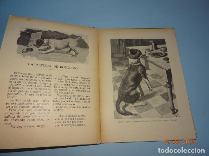 Libros antiguos: MI MEJOR JUGUETE 1ª Edición de 1930 Editorial Ramón Sopena BIBLIOTECA PARA NIÑOS - Foto 2 - 133928310