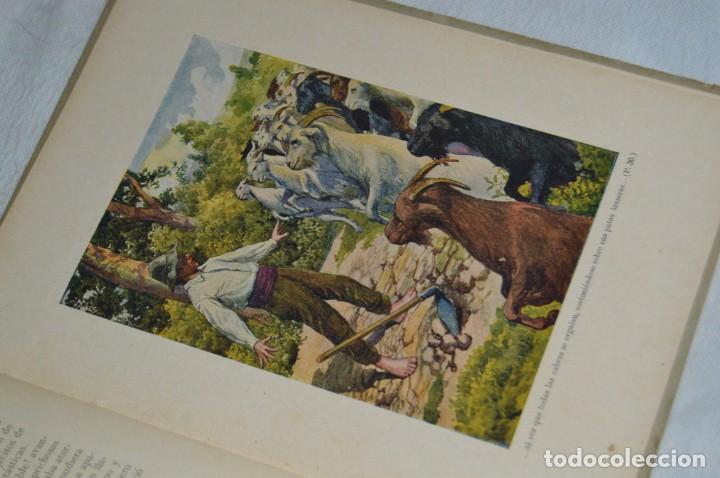 Libros antiguos: ANTIGUO CUENTO INFANTIL - EL MUNDO MARAVILLOSO - EDITORIAL RAMÓN SOPENA - 1935 - VINTAGE - ENVÍO24H - Foto 15 - 134983786