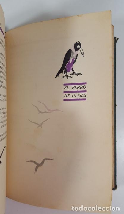 Libros antiguos: CUENTOS Y MÁS CUENTOS. SATURNINO CALLEJA. MADRID. S/F. - Foto 10 - 145326542