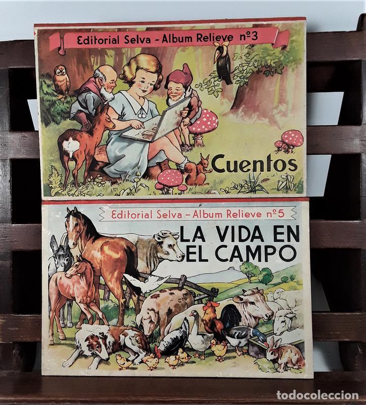 COLECCIÓN ALBUMS RELIEVE SELVA. 2 EJEMPLARES. BARCELONA. AÑOS 30?. (Libros Antiguos, Raros y Curiosos - Literatura Infantil y Juvenil - Cuentos)