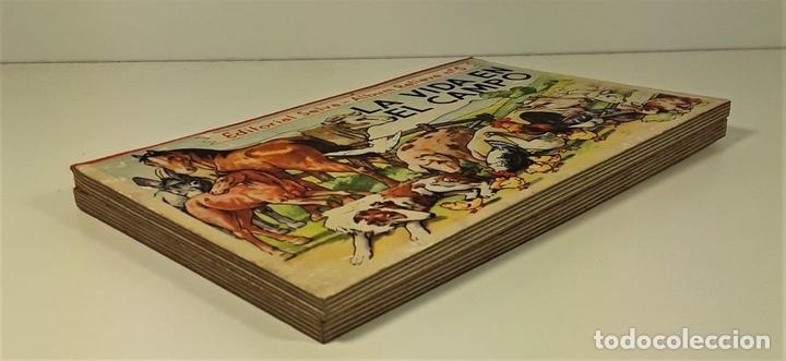 Libros antiguos: COLECCIÓN ALBUMS RELIEVE SELVA. 2 EJEMPLARES. BARCELONA. AÑOS 30?. - Foto 2 - 160356426