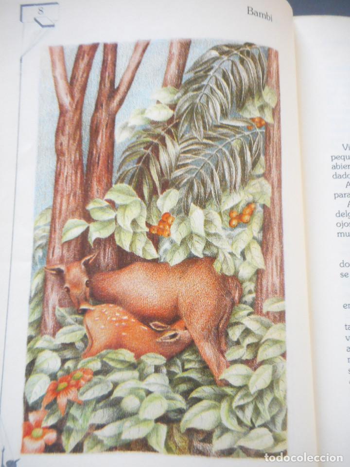 Libros antiguos: Bambi - Ediciones Generales Anaya - 1ª edición, 1985 - Foto 6 - 163530398