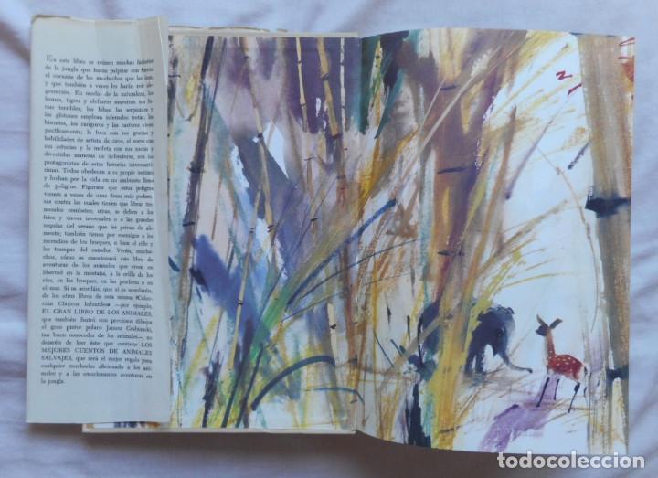Libros antiguos: El gran libro de las fieras - Ilust. Janusk Grabianski - Ed. Noguer - 1965 - Foto 3 - 172770564