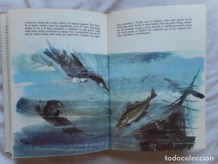 Libros antiguos: El gran libro de las fieras - Ilust. Janusk Grabianski - Ed. Noguer - 1965 - Foto 7 - 172770564