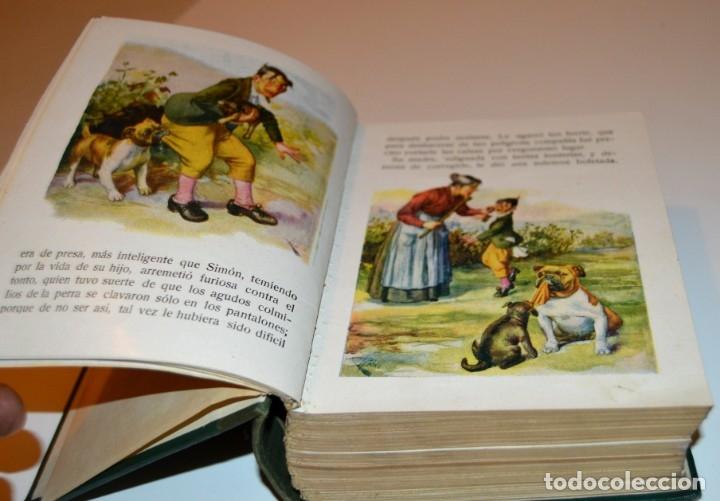 Libros antiguos: RAMON SOPENA - 29 CUENTOS ILUSTRADOS PARA NIÑOS - ENCUADERNADOS EN UN TOMO - IMPECABLES - Foto 4 - 172799969