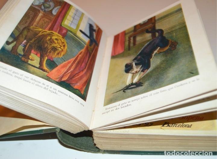 Libros antiguos: RAMON SOPENA - 29 CUENTOS ILUSTRADOS PARA NIÑOS - ENCUADERNADOS EN UN TOMO - IMPECABLES - Foto 16 - 172799969