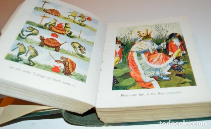 Libros antiguos: RAMON SOPENA - 29 CUENTOS ILUSTRADOS PARA NIÑOS - ENCUADERNADOS EN UN TOMO - IMPECABLES - Foto 21 - 172799969