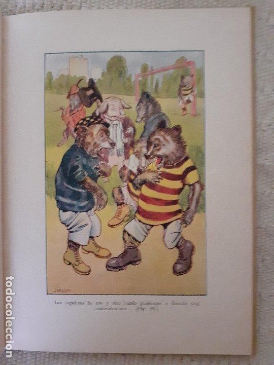 Libros antiguos: Historias de animales - Ilust. Joan Llaverías - Ramón Sopena , 1936 - Foto 4 - 223486181