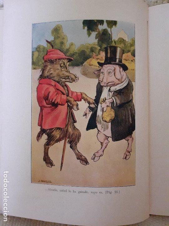 Libros antiguos: Historias de animales - Ilust. Joan Llaverías - Ramón Sopena , 1936 - Foto 5 - 223486181