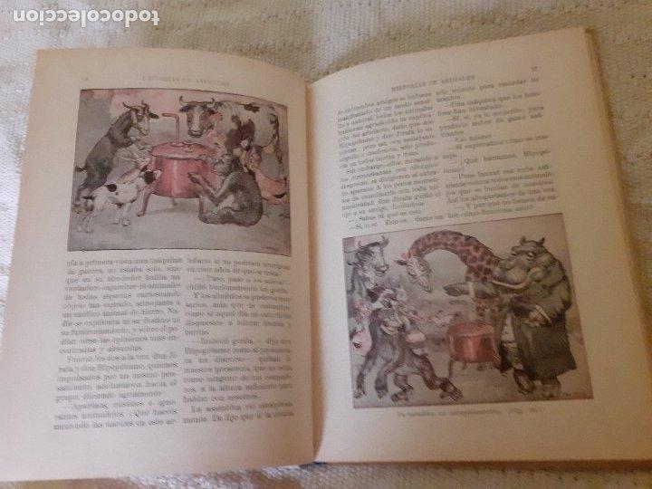 Libros antiguos: Historias de animales - Ilust. Joan Llaverías - Ramón Sopena , 1936 - Foto 7 - 223486181