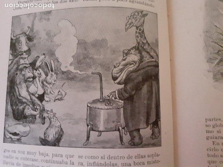 Libros antiguos: Historias de animales - Ilust. Joan Llaverías - Ramón Sopena , 1936 - Foto 8 - 223486181