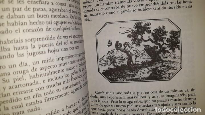 Libros antiguos: HISTORIAS DE LA NATURALEZA PARA CONTAR A LOS NIÑOS WADDINGHAM SEERS CONSTRUCTORES HILANDEROS DRAGÓN - Foto 2 - 191618450
