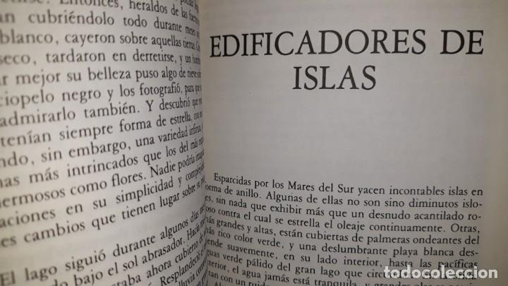 Libros antiguos: HISTORIAS DE LA NATURALEZA PARA CONTAR A LOS NIÑOS WADDINGHAM SEERS CONSTRUCTORES HILANDEROS DRAGÓN - Foto 4 - 191618450