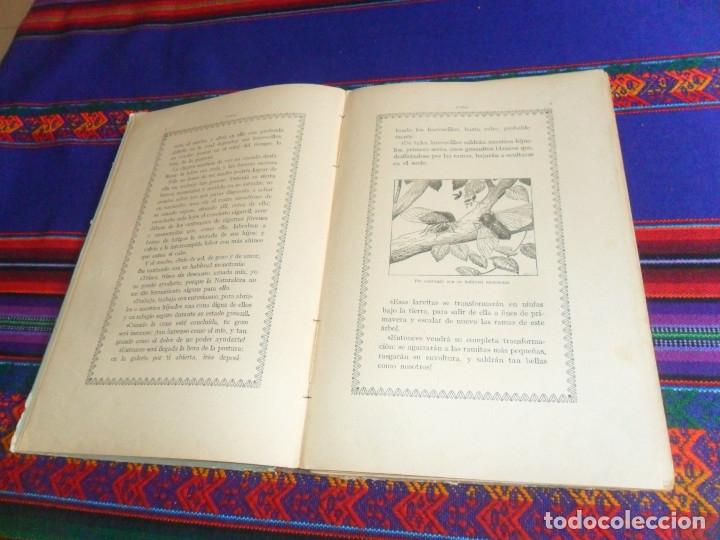 Libros antiguos: BIBLIOTECA NATURA IDILIO LA GOLONDRINA DE MANUEL MARINEL-LO. DIBUJOS OPISSO. MUY RARO. - Foto 6 - 54739273