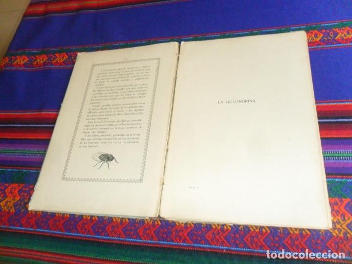 Libros antiguos: BIBLIOTECA NATURA IDILIO LA GOLONDRINA DE MANUEL MARINEL-LO. DIBUJOS OPISSO. MUY RARO. - Foto 7 - 54739273