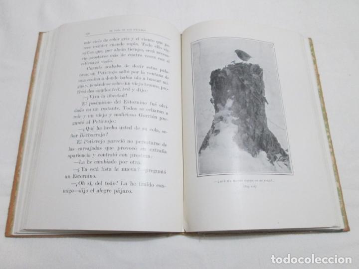 Libros antiguos: EXTRAÑAS AVENTURAS EN EL PAIS DE LOS PAJAROS - R. KEARTON (TRADUCCION) - 193.... - Foto 4 - 178373276