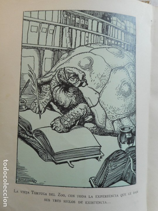 Libros antiguos: El Arca de Noe - Ilustr. de Joan LLaverias - Juventud, 1930 - Foto 11 - 181177092