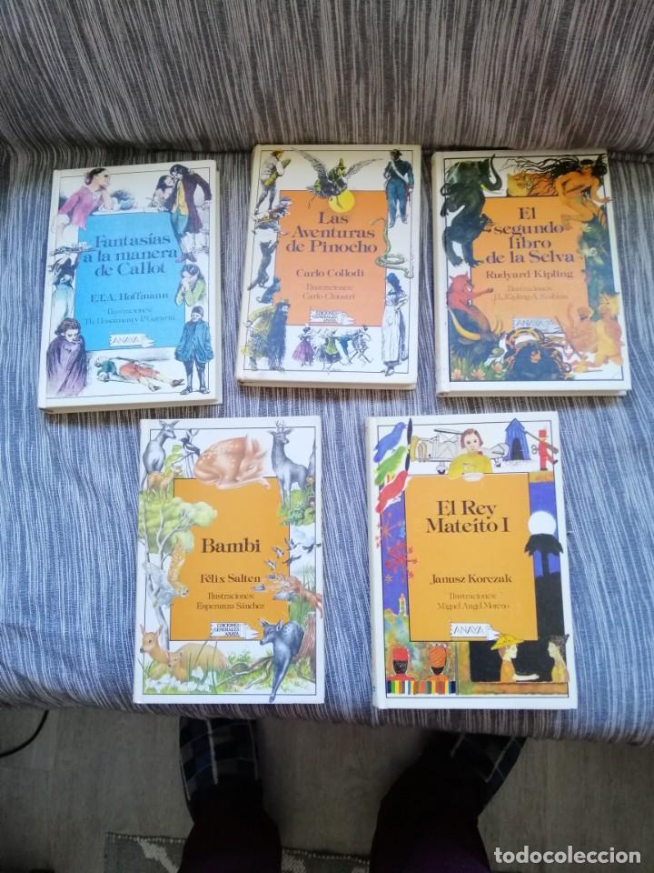 LOTE CUENTOS ANAYA LAURIN. (Libros Antiguos, Raros y Curiosos - Literatura Infantil y Juvenil - Cuentos)