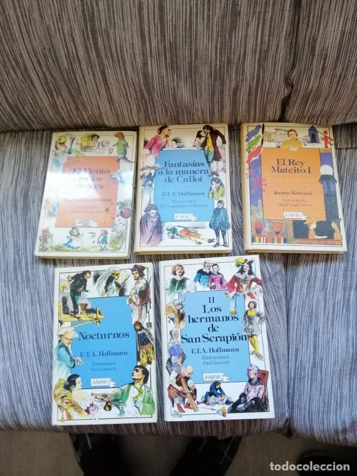 LOTE CUENTO ANAYA LAURIN (Libros Antiguos, Raros y Curiosos - Literatura Infantil y Juvenil - Cuentos)
