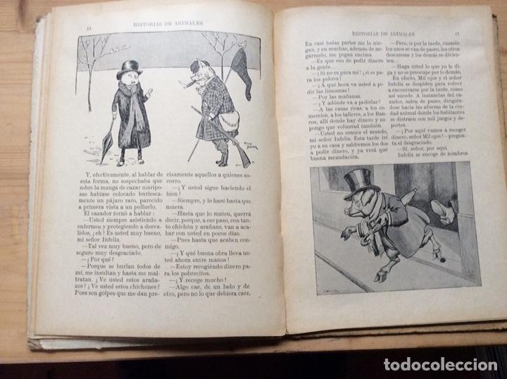 Libros antiguos: HISTORIAS DE ANIMALES - Foto 3 - 197546937