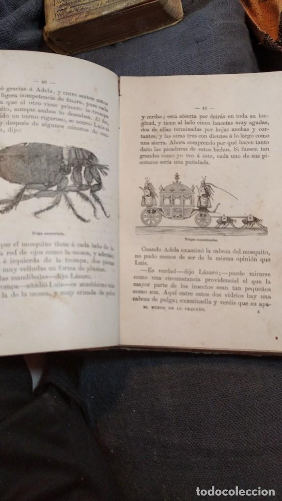 Libros antiguos: EL MUNDO DE LO PEQUEÑO 1901 (prodigios del microscopio) D. Roque Gálvez y Encinar, 66 grabados - Foto 5 - 207409982