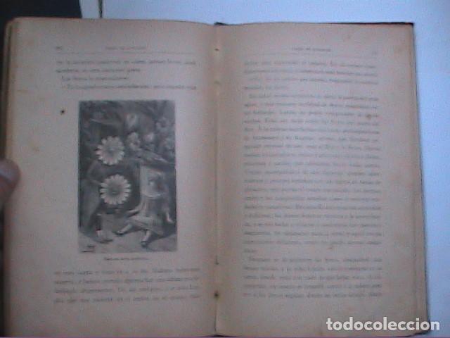 Libros antiguos: PREMIO DE APLICACIÓN. CUENTOS PARA NIÑOS. 1903. SATURNINO CALLEJA. - Foto 5 - 214047453