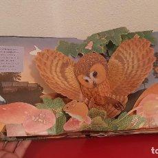 Libros antiguos: LIBRO POP UP 3D SONIDOS ANIMALES LA NOCHE SM MAURICE PLEDGER 2007 SORPRESA MOVIMIENTO SONIDO. Lote 214167860