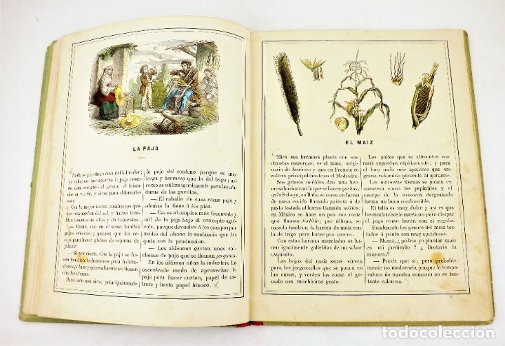 Libros antiguos: Madame Doudet El nene se instruye - Foto 3 - 218486390