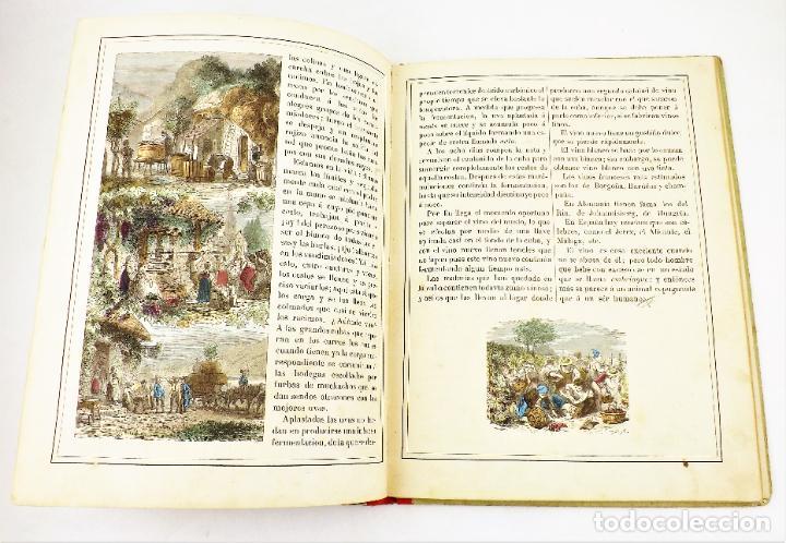 Libros antiguos: Madame Doudet El nene se instruye - Foto 4 - 218486390