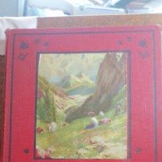 Libros antiguos: HEIDI DE JUANA SPYRI EDITORIAL JUVENTUD AÑO 1927. Lote 221446896