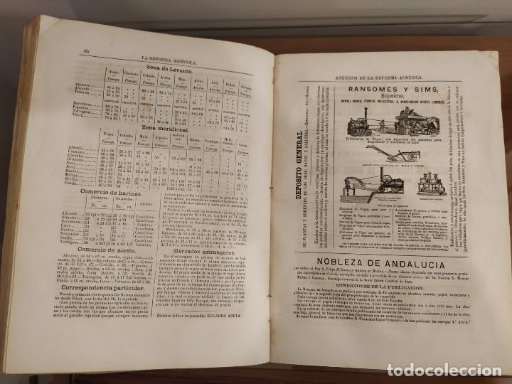 Libros antiguos: INFORME SOCIEDAD ECONÓMICA DE MADRID LEY AGRARIA MELCHOR JOVELLANOS 1866 + REVISTAS REFORMA AGRARIA - Foto 5 - 144583734