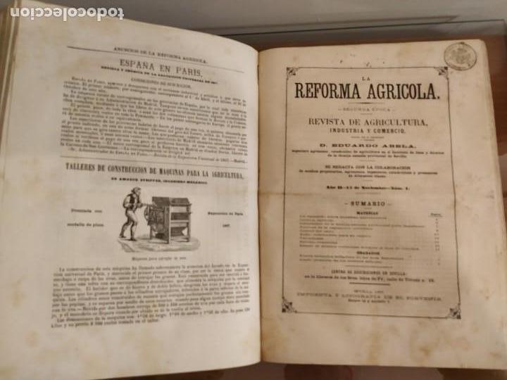 Libros antiguos: INFORME SOCIEDAD ECONÓMICA DE MADRID LEY AGRARIA MELCHOR JOVELLANOS 1866 + REVISTAS REFORMA AGRARIA - Foto 7 - 144583734