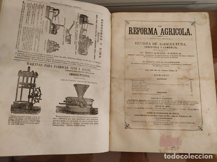 Libros antiguos: INFORME SOCIEDAD ECONÓMICA DE MADRID LEY AGRARIA MELCHOR JOVELLANOS 1866 + REVISTAS REFORMA AGRARIA - Foto 8 - 144583734