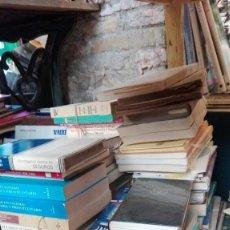 Libros antiguos: GRAN LOTE DE MAS DE 300 LIBROS DE ECONOMIA, DERECHO,FINANZAS.... Lote 174545563