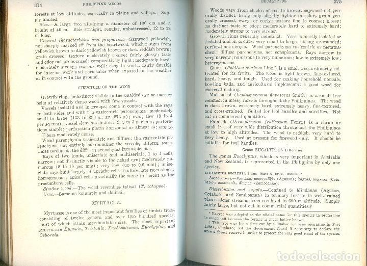 Libros antiguos: NUMULITE L1228 Philippine woods Luis J. Reyes Manila 1938 Maderas de Filipinas Falta portada - Foto 2 - 194238498
