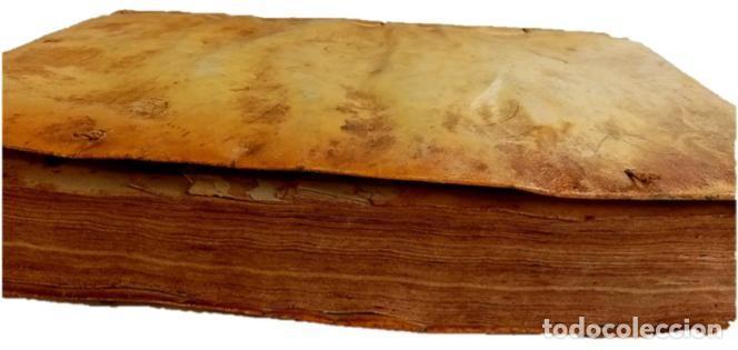 Libros antiguos: PRAXIS CIVILIS NOBILIS - LIBRO DE DERECHO EN LATÍN S XVII - Foto 2 - 207546756