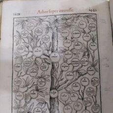 Libros antiguos: 1576. CÓDICE DE JUSTINIANO. FOLIO MAYOR. SIN TAPAS. DERECHO. 1848 COLUMNAS. GRABADOS.. Lote 212529532