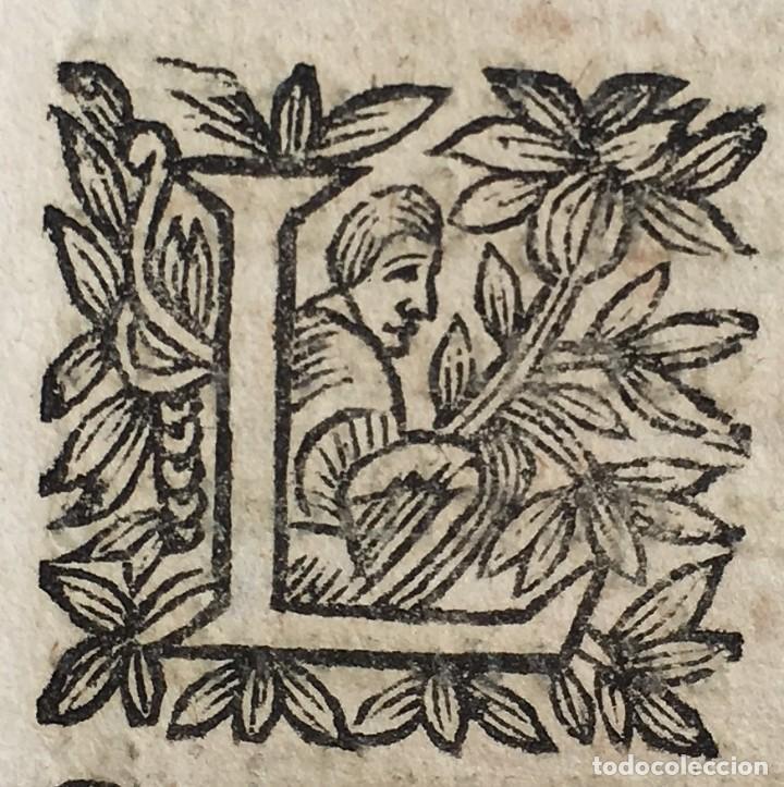 Libros antiguos: Año 1683 - TRACTATUS DE CESSIONE IURIUM - Alfonso de Olea - Pergamino - Derecho - Folio - Valladolid - Foto 32 - 267018889