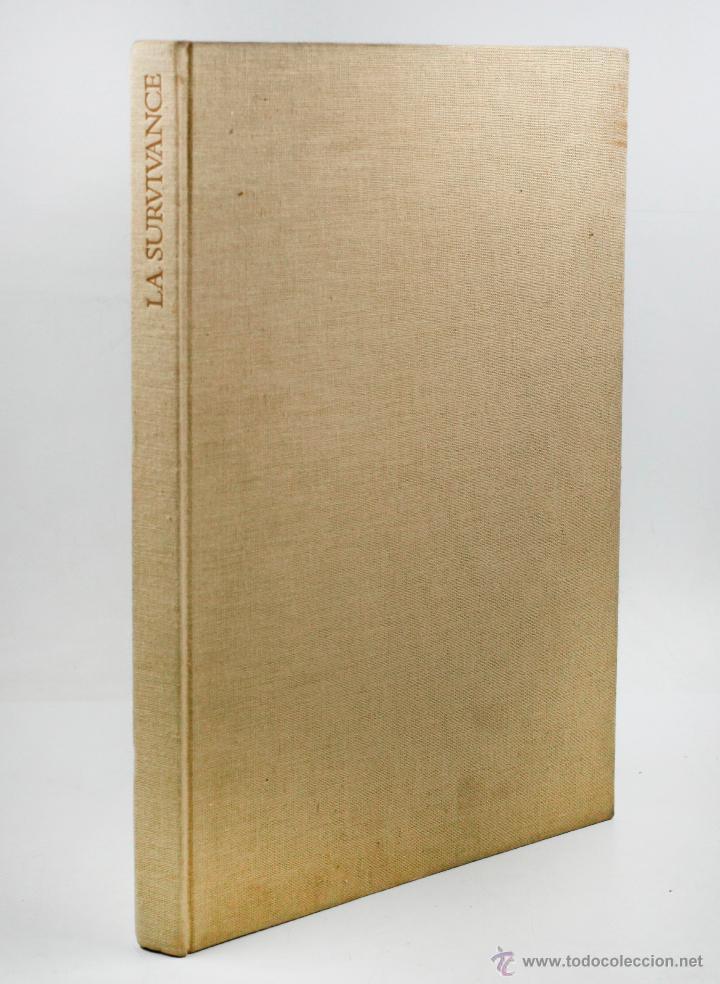 Libros antiguos: LA survivance, fotografías de edouard Boubat, mercure de france, 1976. 28x27 cm. - Foto 7 - 49112467