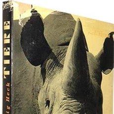 Libros antiguos: TIERE: WIE SIE WIRTLICH SIND. (L. HECK. BERLÍN, 1934) FOTOGRAFÍAS HUECOGRABADO. ANIMALES. ALEMANIA. Lote 80823235