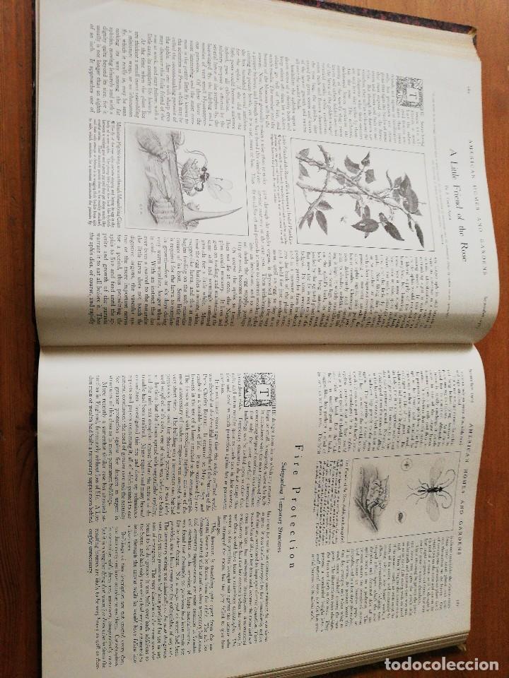 Libros antiguos: American Homes and Gardens. July-December. 1905 - Foto 20 - 125280495