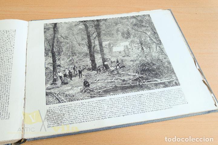 Libros antiguos: Portfolio de fotografias de las ciudades, paisajes y cuadros célebres - Foto 14 - 135894298