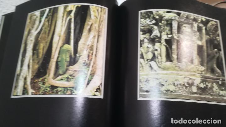 Libros antiguos: LIBRO FOTOGRAFIA STONED IMAGES EDITORIAL PAPER TIGER - Foto 2 - 171591969