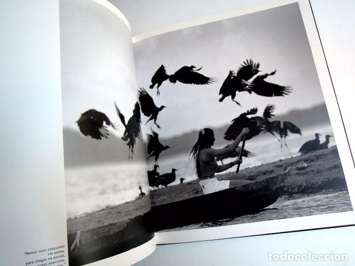 Libros antiguos: Pedro Martinelli - Mulheres da Amazonia - Ed. Jaraqui, Brazil 2003 - Foto 7 - 225001437