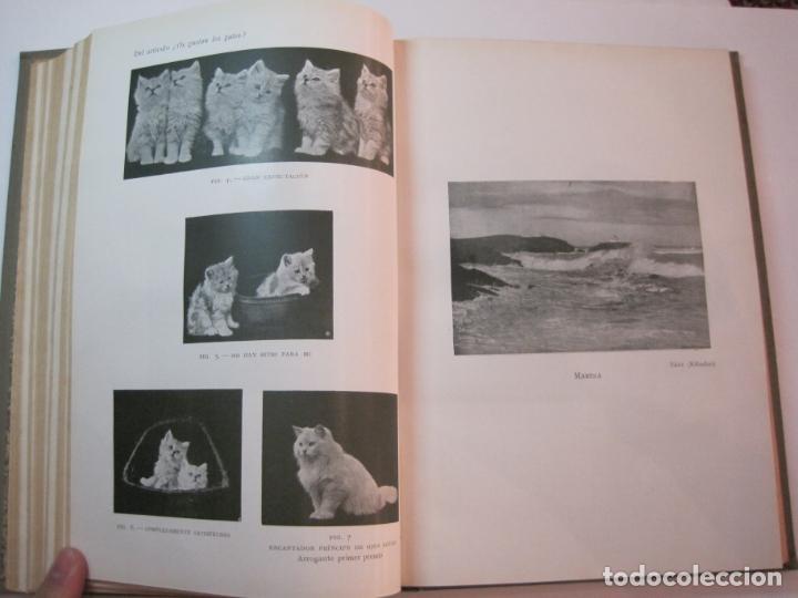 Libros antiguos: EL PROCESO FOTOGRAFICO-AÑO 1924-REVISTA ILUSTRADA-VER FOTOS-(V-22.751) - Foto 34 - 261849130