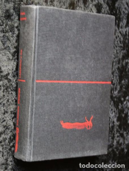 Libros antiguos: ALVARO CUNQUEIRO - LABERINTO Y Cia. - 1970 - TAPA DURA - Foto 7 - 82315120