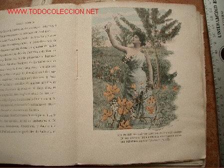 Libros antiguos: - Foto 4 - 27445848