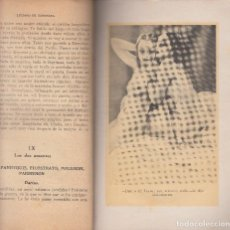 Libros antiguos: CUADROS ERÓTICOS LUCIANO DE SAMOSANTA ILUSTRADO KIOTO EROTISMO EDITORIAL FÉNIX 1930. Lote 103332755