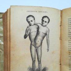 Libros antiguos: EXCEPCIONAL Y RARO LIBRO DEL AÑO 1894 SOBRE SEXO, PROSTITUCIÓN, FENÓMENOS SEXUALES,... GRABADOS. Lote 136217890