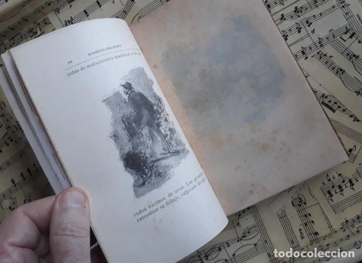 Libros antiguos: A. DAUDET 1889 HELMONT DIARIO DE UN SOLITARIO 115 grabados cromotipias. Bibl. de Macedonio Fernández - Foto 2 - 208178937